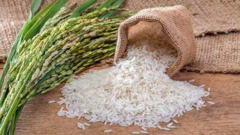 گزارش اندازه بازار برنج در ایران