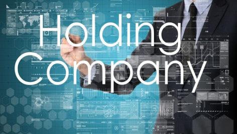 گزارش بررسی عملکرد شرکتها ی مادرتخصصی (هلدینگ) درایران